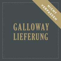 Galloway-Termin