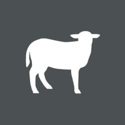 Grafik-Bio-Lamm