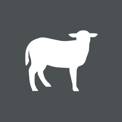 Icon Bio-Lamm