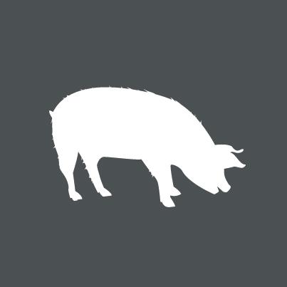 Icon Turpolje-Schwein