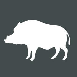 Icon Wildschwein
