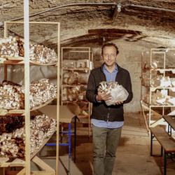 Pilzbrüder - Pilzzucht im Keller
