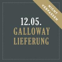 Galloway-Termin am 12.5