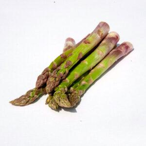 bio-spargel gruen solo plus von brandenstein