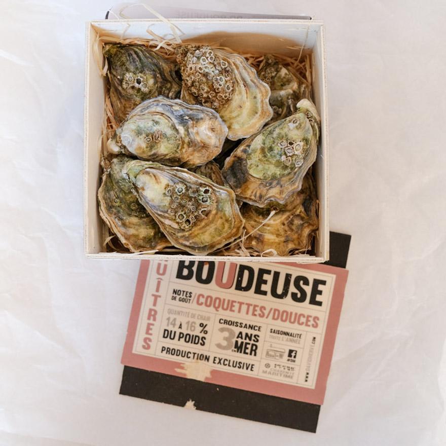 Austern Nr.5 Boudeuse
